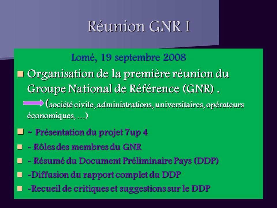 Réunion GNR I Lomé, 19 septembre 2008 Lomé, 19 septembre 2008 Organisation de la première réunion du Groupe National de Référence (GNR).