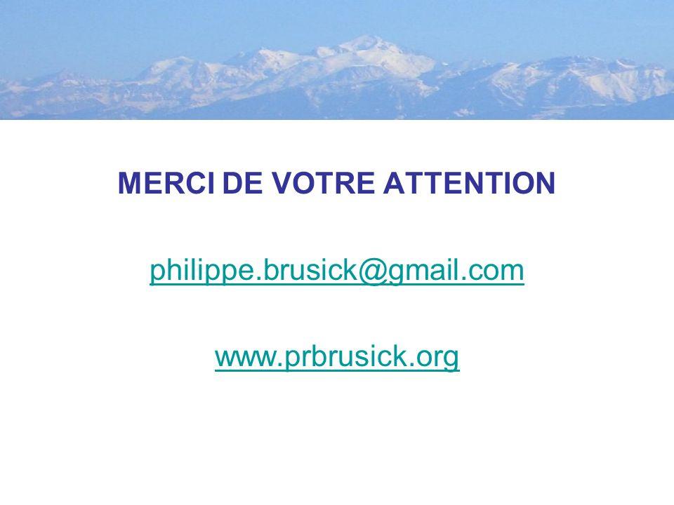 MERCI DE VOTRE ATTENTION philippe.brusick@gmail.com www.prbrusick.org