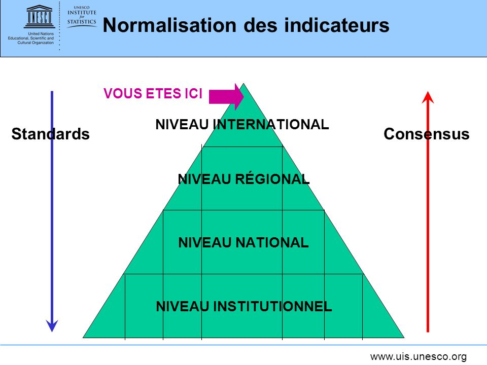www.uis.unesco.org Normalisation des indicateurs NIVEAU INTERNATIONAL NIVEAU RÉGIONAL NIVEAU NATIONAL NIVEAU INSTITUTIONNEL ConsensusStandards VOUS ET