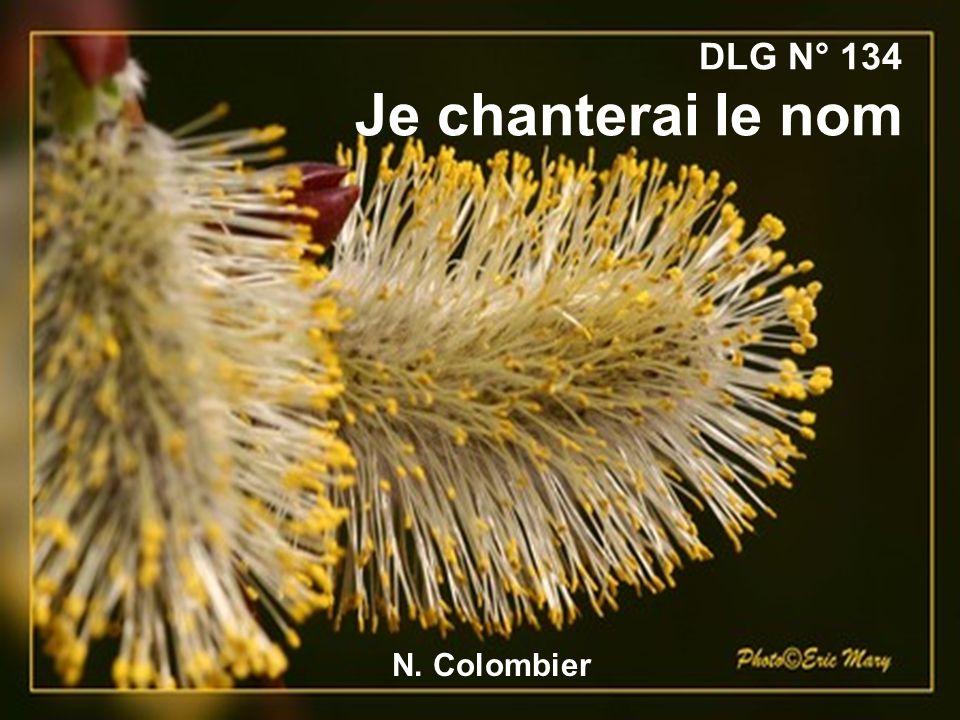 DLG N° 134 Je chanterai le nom N. Colombier
