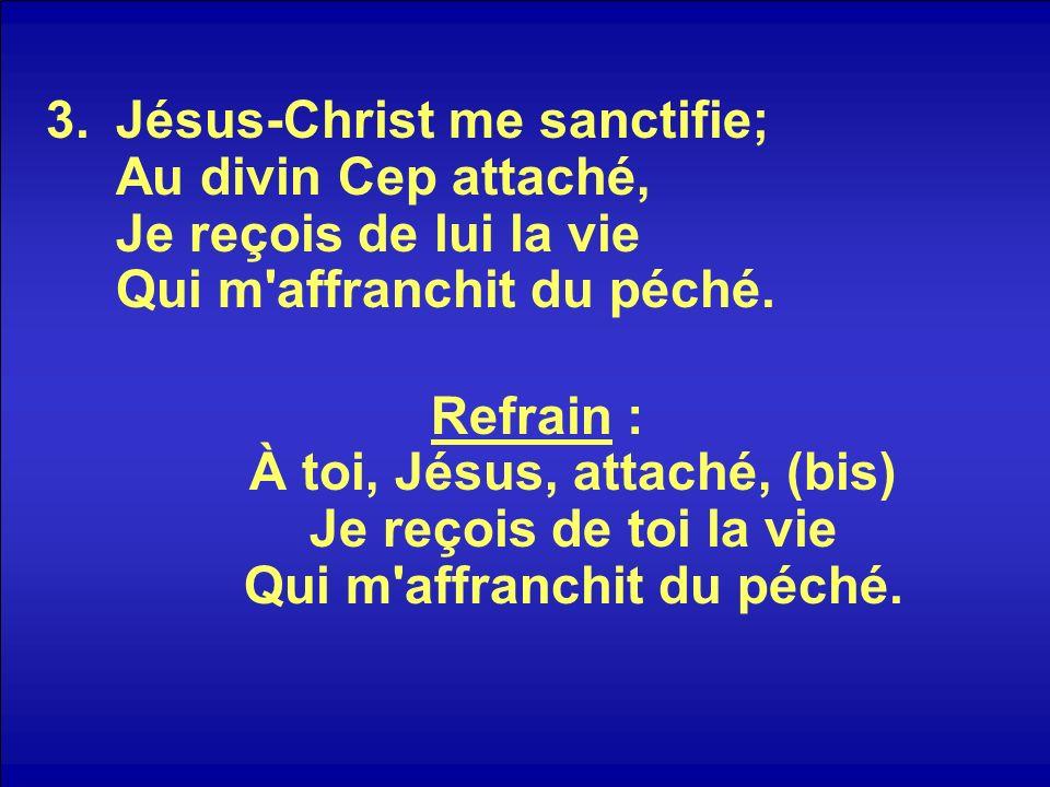 3.Jésus-Christ me sanctifie; Au divin Cep attaché, Je reçois de lui la vie Qui m affranchit du péché.