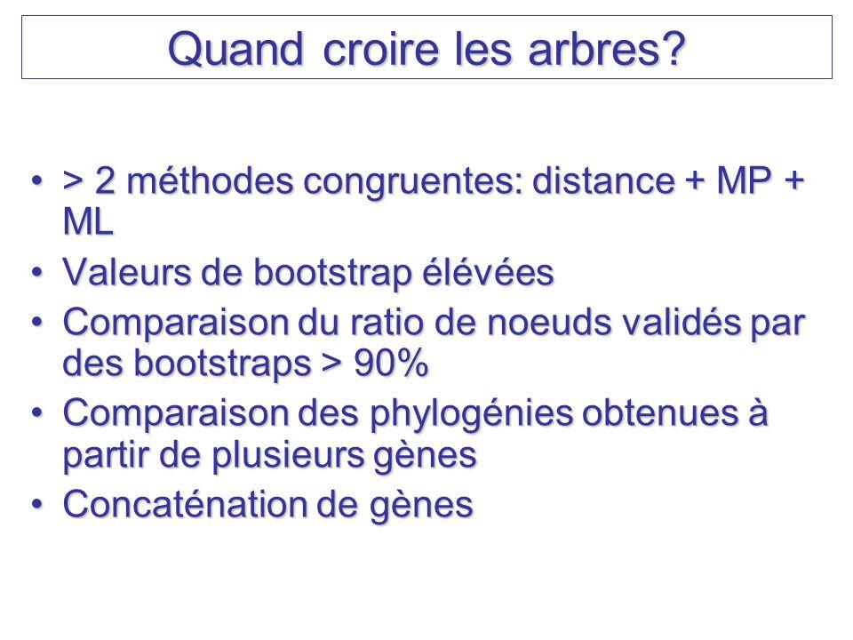 Quand croire les arbres? > 2 méthodes congruentes: distance + MP + ML> 2 méthodes congruentes: distance + MP + ML Valeurs de bootstrap élévéesValeurs
