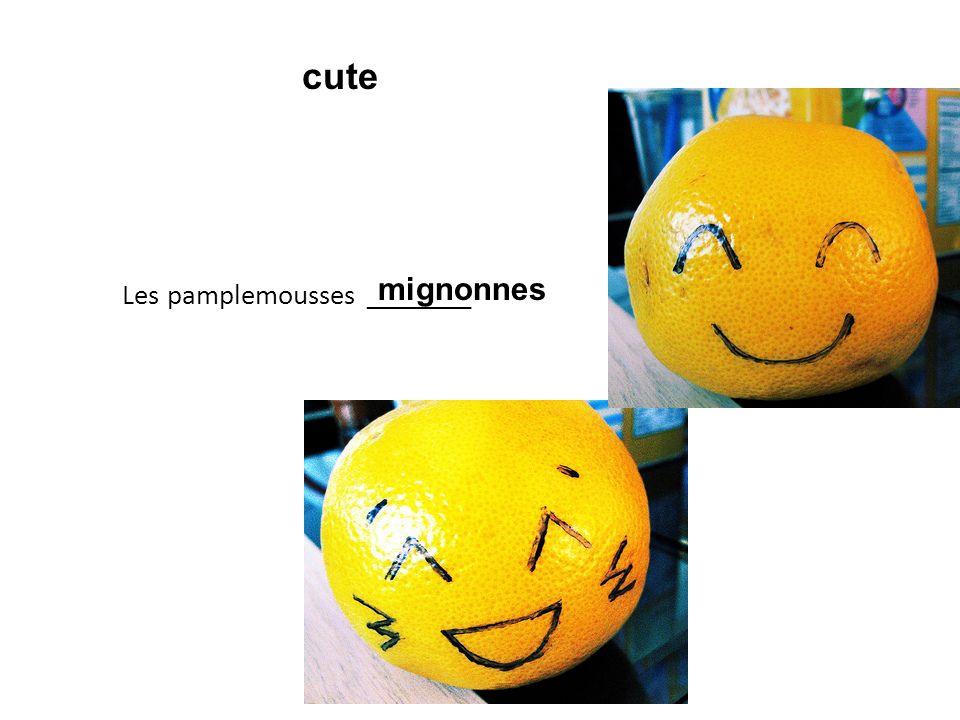 Les pamplemousses ________ mignonnes cute