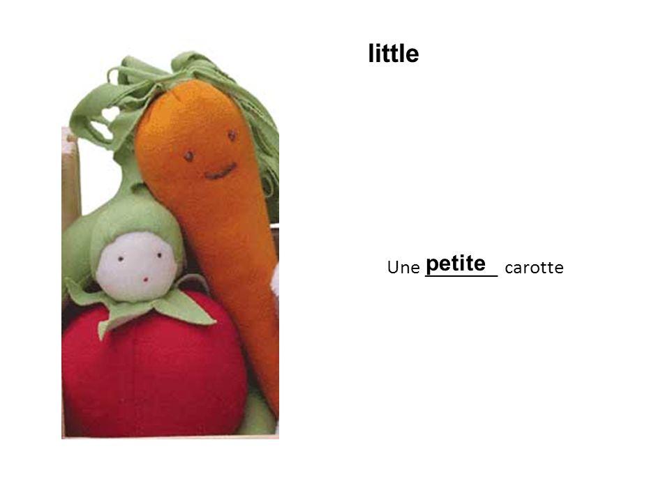 Une ________ carotte petite little