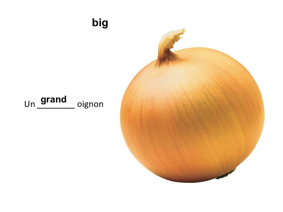 Un ________ oignon grand big