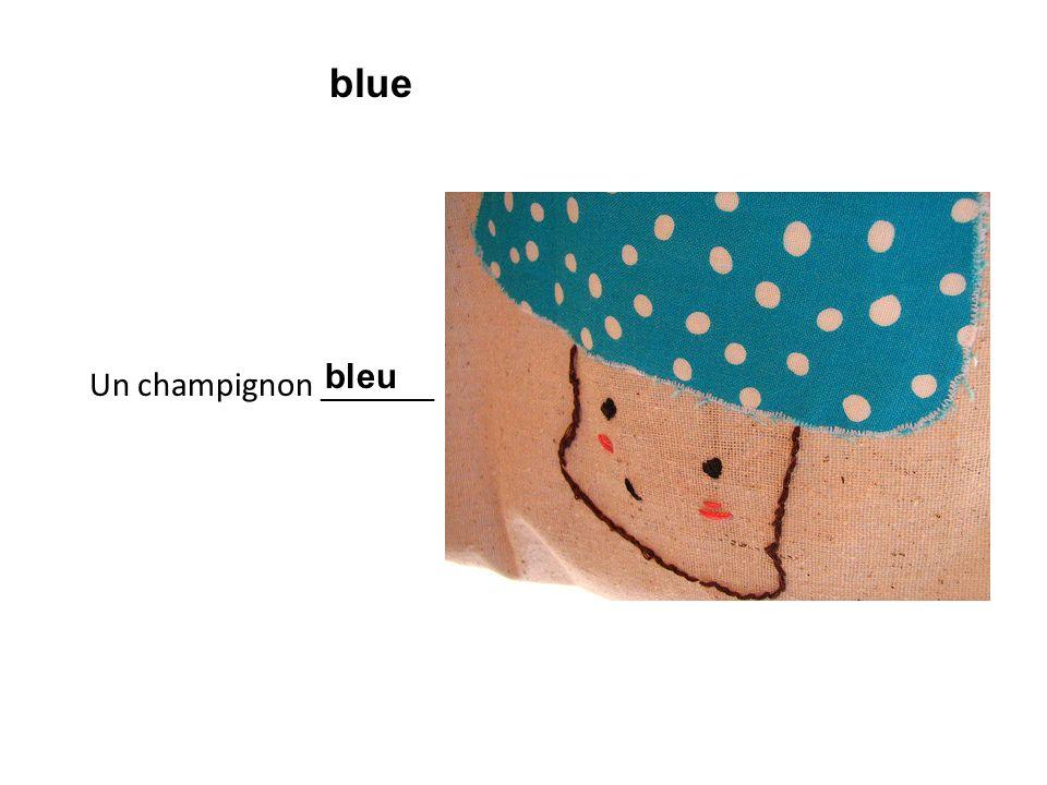 Un champignon ________ bleu blue