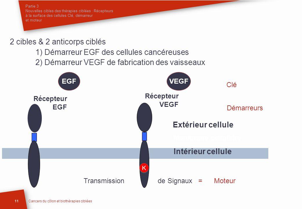 Partie 3 Nouvelles cibles des thérapies ciblées : Récepteurs à la surface des cellules Clé, démarreur et moteur 11Cancers du côlon et biothérapies cib