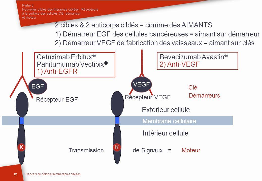 Partie 3 Nouvelles cibles des thérapies ciblées : Récepteurs à la surface des cellules Clé, démarreur et moteur 12Cancers du côlon et biothérapies cib