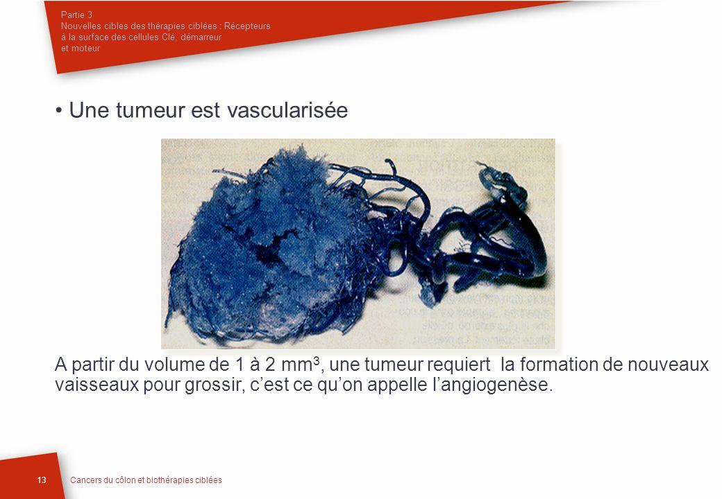 Partie 3 Nouvelles cibles des thérapies ciblées : Récepteurs à la surface des cellules Clé, démarreur et moteur Une tumeur est vascularisée A partir d