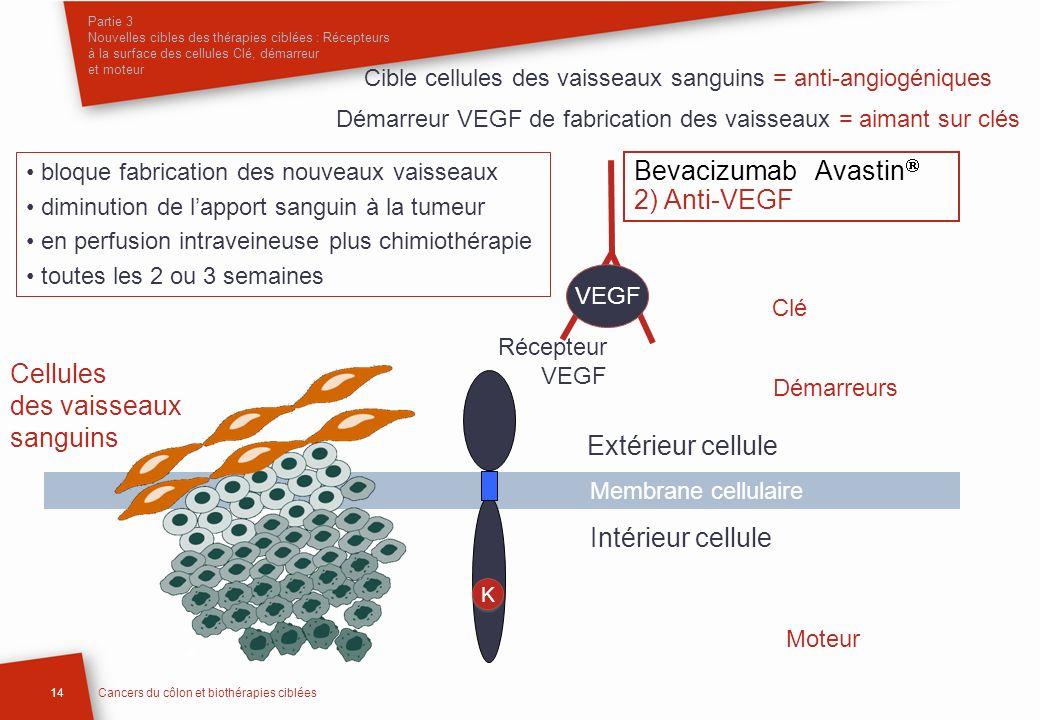 Partie 3 Nouvelles cibles des thérapies ciblées : Récepteurs à la surface des cellules Clé, démarreur et moteur 14Cancers du côlon et biothérapies cib