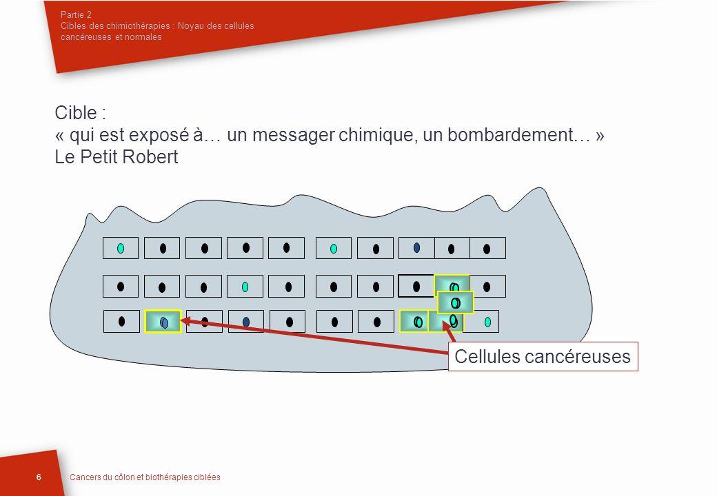 Partie 2 Cibles des chimiothérapies : Noyau des cellules cancéreuses et normales Cible : « qui est exposé à… un messager chimique, un bombardement… »