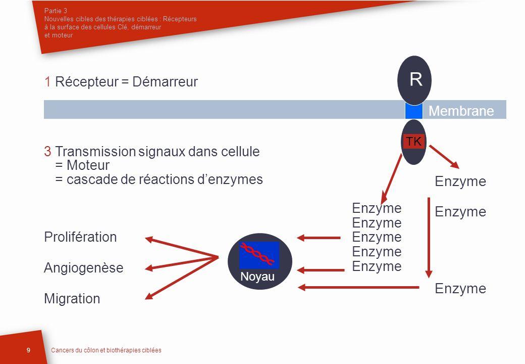 Partie 3 Nouvelles cibles des thérapies ciblées : Récepteurs à la surface des cellules Clé, démarreur et moteur 9Cancers du côlon et biothérapies cibl