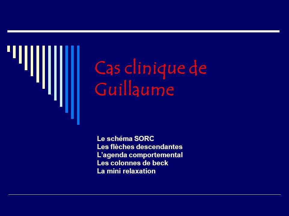 Cas clinique de Guillaume Le schéma SORC Les flèches descendantes Lagenda comportemental Les colonnes de beck La mini relaxation