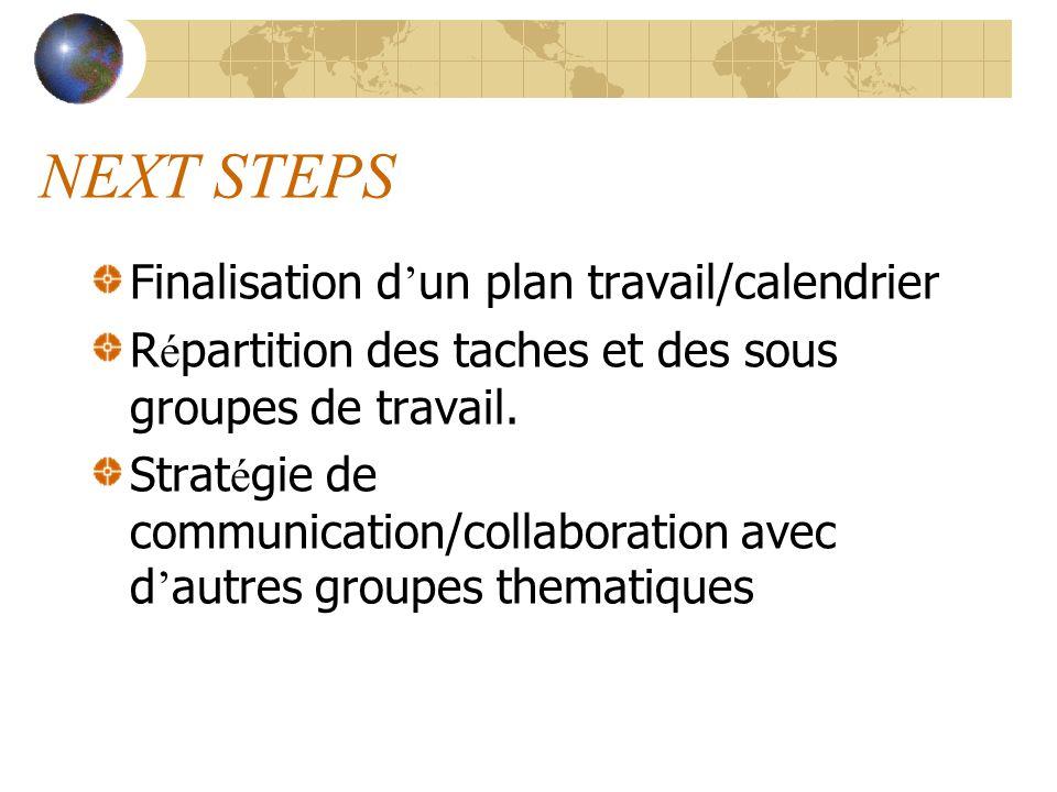 NEXT STEPS Finalisation d un plan travail/calendrier R é partition des taches et des sous groupes de travail. Strat é gie de communication/collaborati