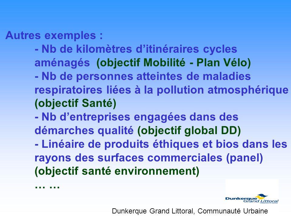 Autres exemples : - Nb de kilomètres ditinéraires cycles aménagés (objectif Mobilité - Plan Vélo) - Nb de personnes atteintes de maladies respiratoire