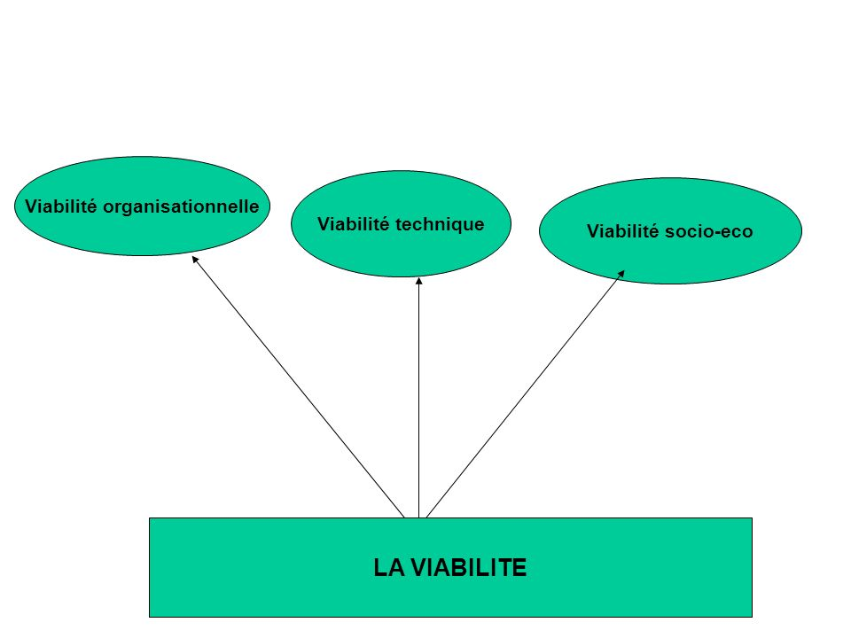Viabilité organisationnelle, Comment.