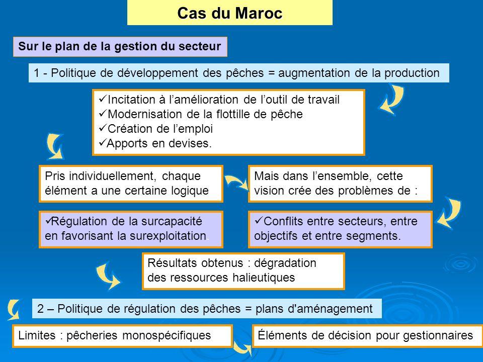Sur le plan de la gestion du secteur Incitation à lamélioration de loutil de travail Modernisation de la flottille de pêche Création de lemploi Apport