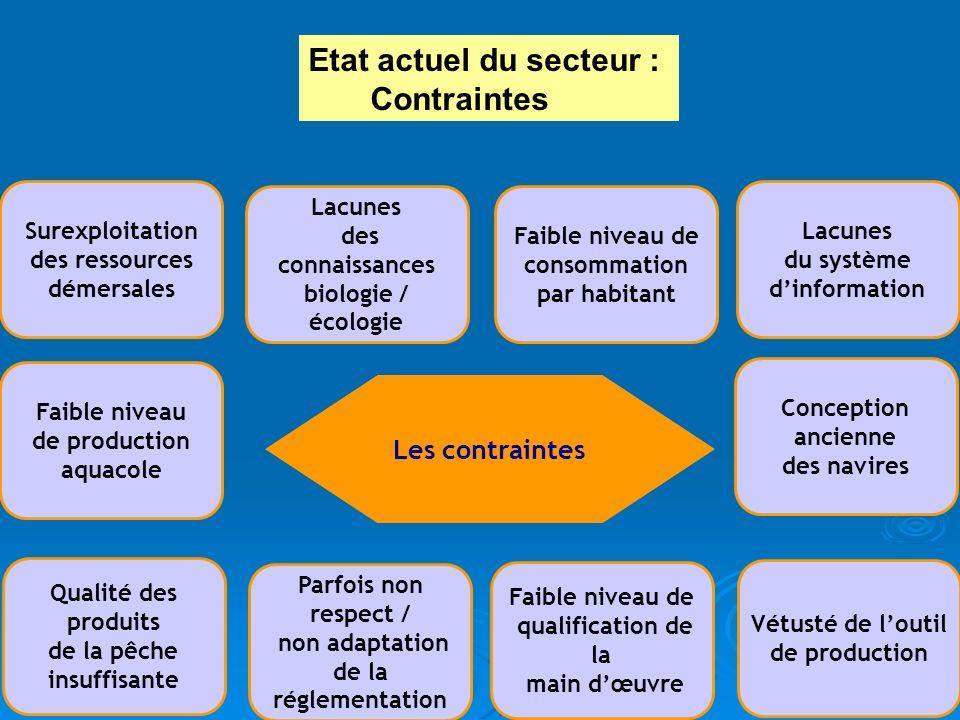 Les contraintes Lacunes du système dinformation Vétusté de loutil de production Qualité des produits de la pêche insuffisante Parfois non respect / no