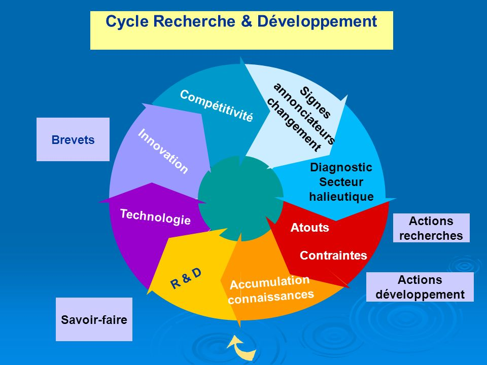 Cycle Recherche & Développement Diagnostic Secteur halieutique Accumulation connaissances Technologie Innovation Compétitivité Signes annonciateurs ch