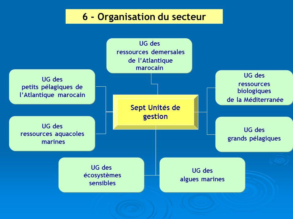 UG des ressources aquacoles marines UG des écosystèmes sensibles UG des algues marines UG des ressources demersales de lAtlantique marocain UG des pet