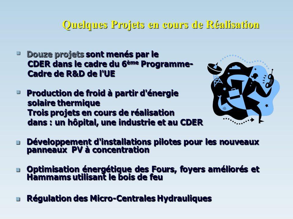 Douze projets sont menés par le Douze projets sont menés par le CDER dans le cadre du 6 ème Programme- CDER dans le cadre du 6 ème Programme- Cadre de