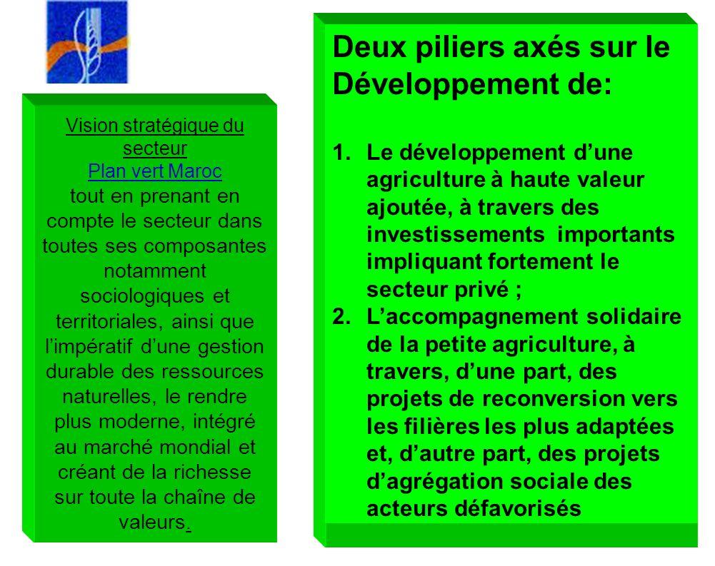 10 Vision stratégique du secteur Plan vert Maroc tout en prenant en compte le secteur dans toutes ses composantes notamment sociologiques et territori