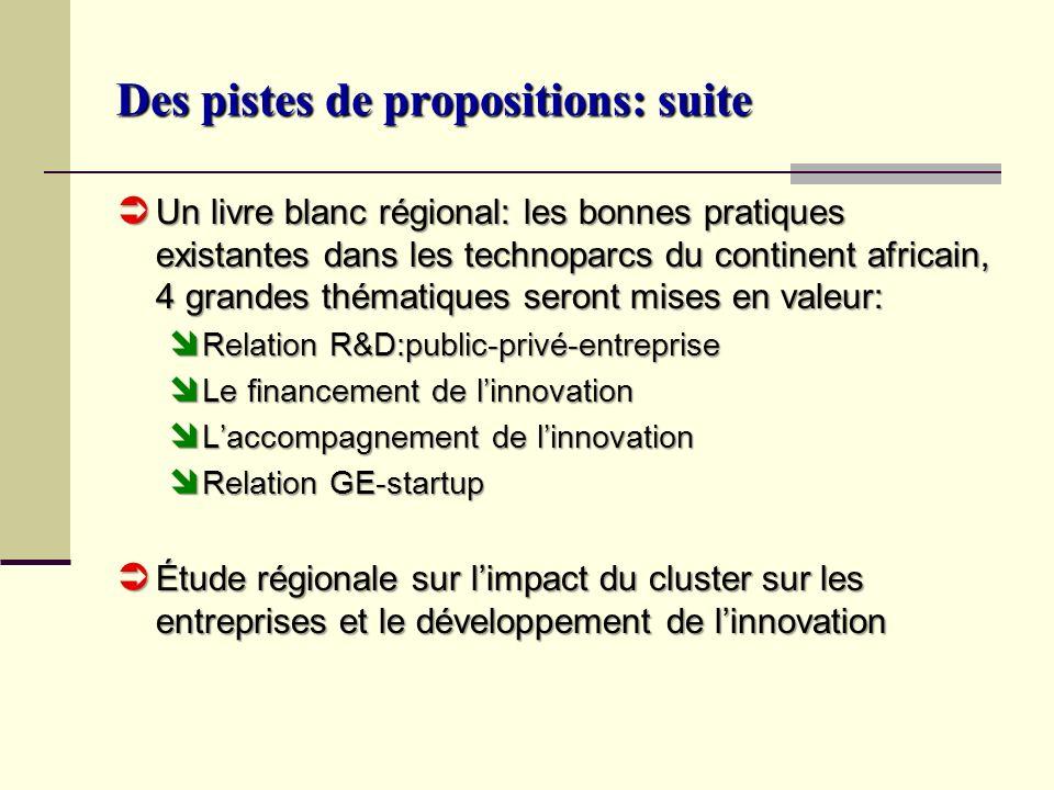 Des pistes de propositions: suite Un livre blanc régional: les bonnes pratiques existantes dans les technoparcs du continent africain, 4 grandes théma