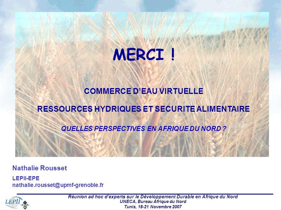Réunion ad hoc dexperts sur le Développement Durable en Afrique du Nord UNECA, Bureau Afrique du Nord Tunis, 18-21 Novembre 2007 Nathalie Rousset LEPII-EPE nathalie.rousset@upmf-grenoble.fr MERCI .
