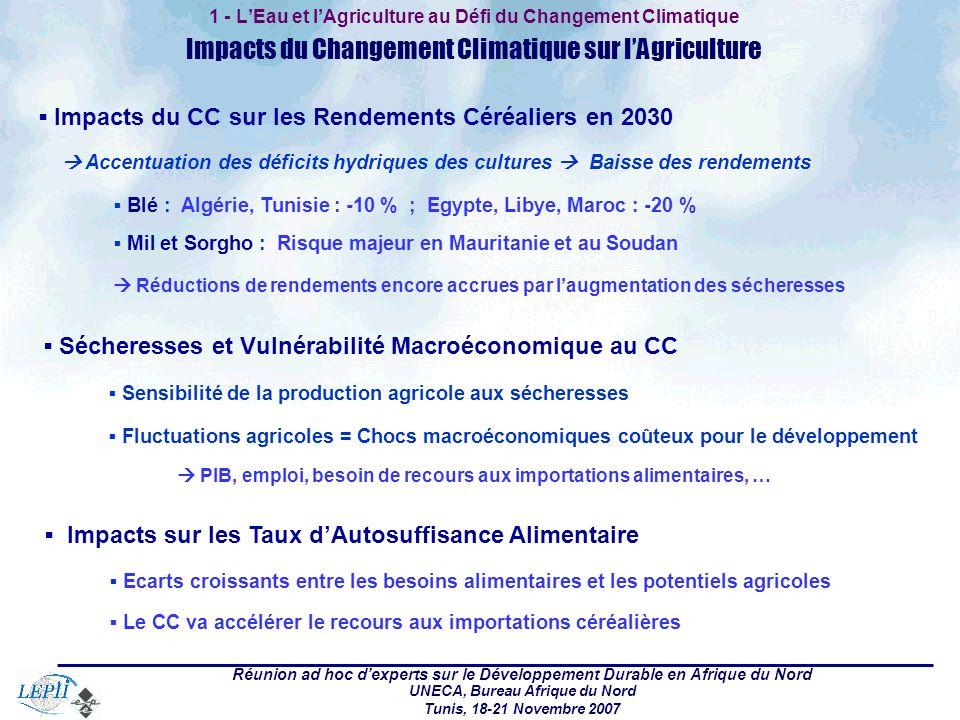 Réunion ad hoc dexperts sur le Développement Durable en Afrique du Nord UNECA, Bureau Afrique du Nord Tunis, 18-21 Novembre 2007 1 - LEau et lAgricult