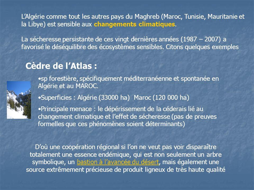 LAlgérie comme tout les autres pays du Maghreb (Maroc, Tunisie, Mauritanie et la Libye) est sensible aux changements climatiques. La sécheresse persis