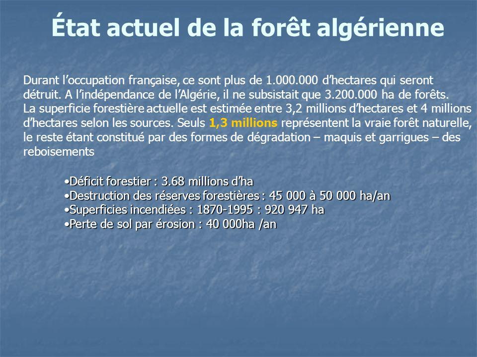 État actuel de la forêt algérienne Durant loccupation française, ce sont plus de 1.000.000 dhectares qui seront détruit. A lindépendance de lAlgérie,