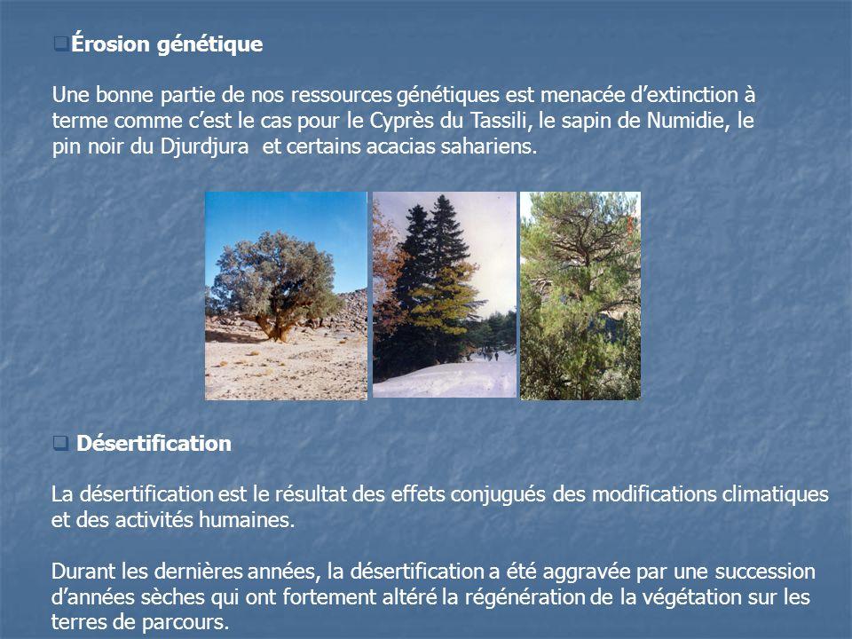 Désertification La désertification est le résultat des effets conjugués des modifications climatiques et des activités humaines. Durant les dernières