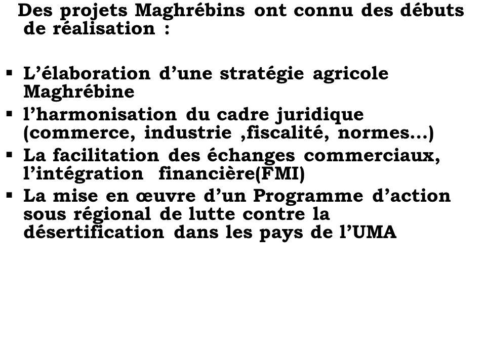 Des projets Maghrébins ont connu des débuts de réalisation : Lélaboration dune stratégie agricole Maghrébine lharmonisation du cadre juridique (commer