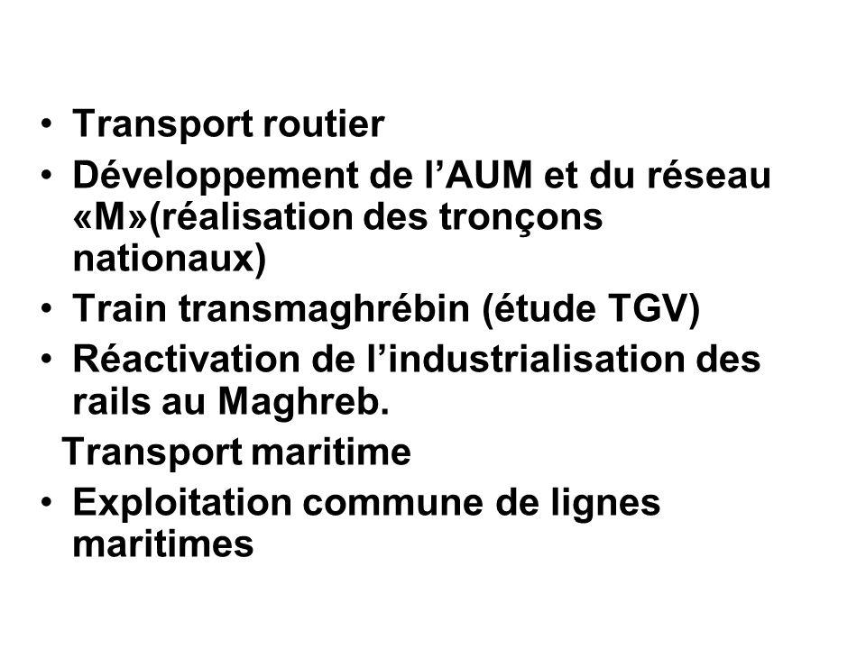 Transport routier Développement de lAUM et du réseau «M»(réalisation des tronçons nationaux) Train transmaghrébin (étude TGV) Réactivation de lindustr