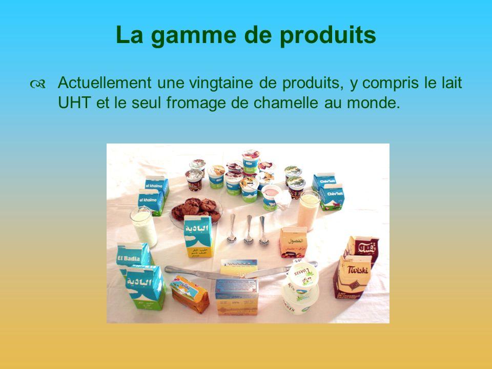 Le fromage de chamelle Na pas pu être exporté, car: Les règlements européens excluent la Mauritanie, Le Maroc, la Tunisie protègent leurs industries, Les décrets dApplication de lUMA sur les tarifs nont pas encore été pris