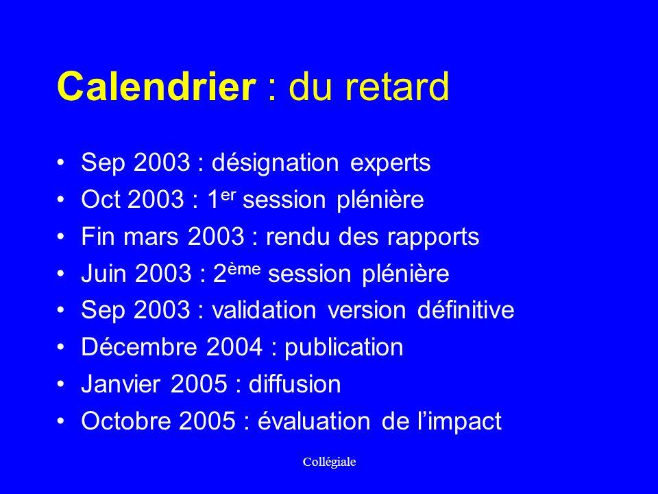 Collégiale Calendrier : du retard Sep 2003 : désignation experts Oct 2003 : 1 er session plénière Fin mars 2003 : rendu des rapports Juin 2003 : 2 ème