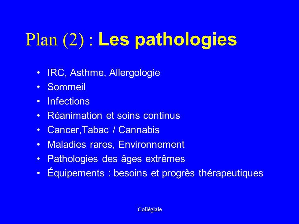 Collégiale Plan (2) : Les pathologies IRC, Asthme, Allergologie Sommeil Infections Réanimation et soins continus Cancer,Tabac / Cannabis Maladies rare