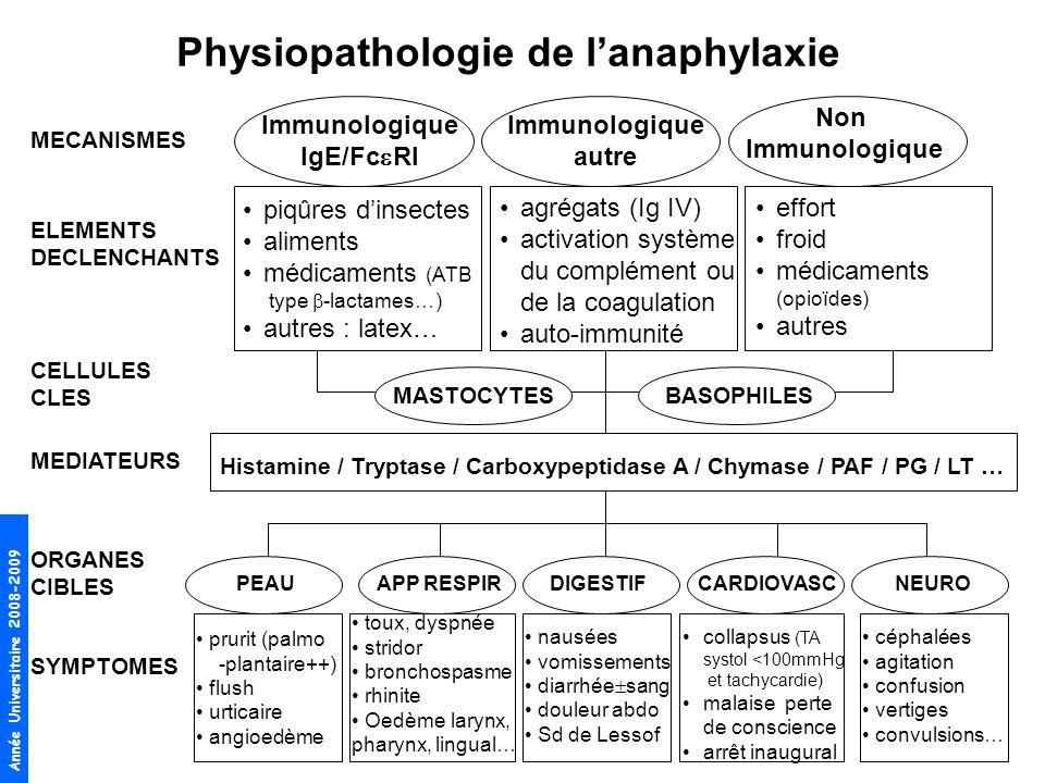 Année Universitaire 2008-2009 Physiopathologie de lanaphylaxie MECANISMES ELEMENTS DECLENCHANTS CELLULES CLES MEDIATEURS ORGANES CIBLES SYMPTOMES Immu