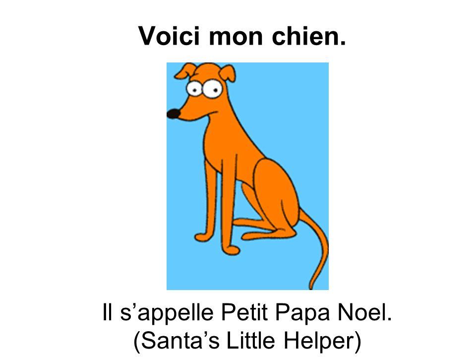 Voici mon chien. Il sappelle Petit Papa Noel. (Santas Little Helper)