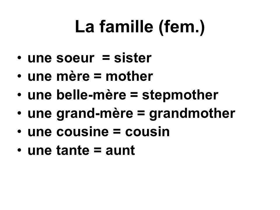 La famille (fem.) une soeur = sister une mère = mother une belle-mère = stepmother une grand-mère = grandmother une cousine = cousin une tante = aunt