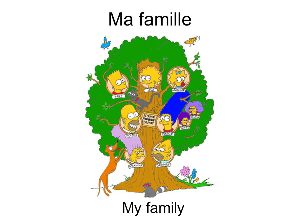 Ma famille My family