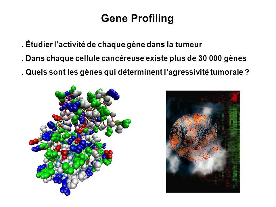 . Étudier lactivité de chaque gène dans la tumeur. Dans chaque cellule cancéreuse existe plus de 30 000 gènes. Quels sont les gènes qui déterminent la