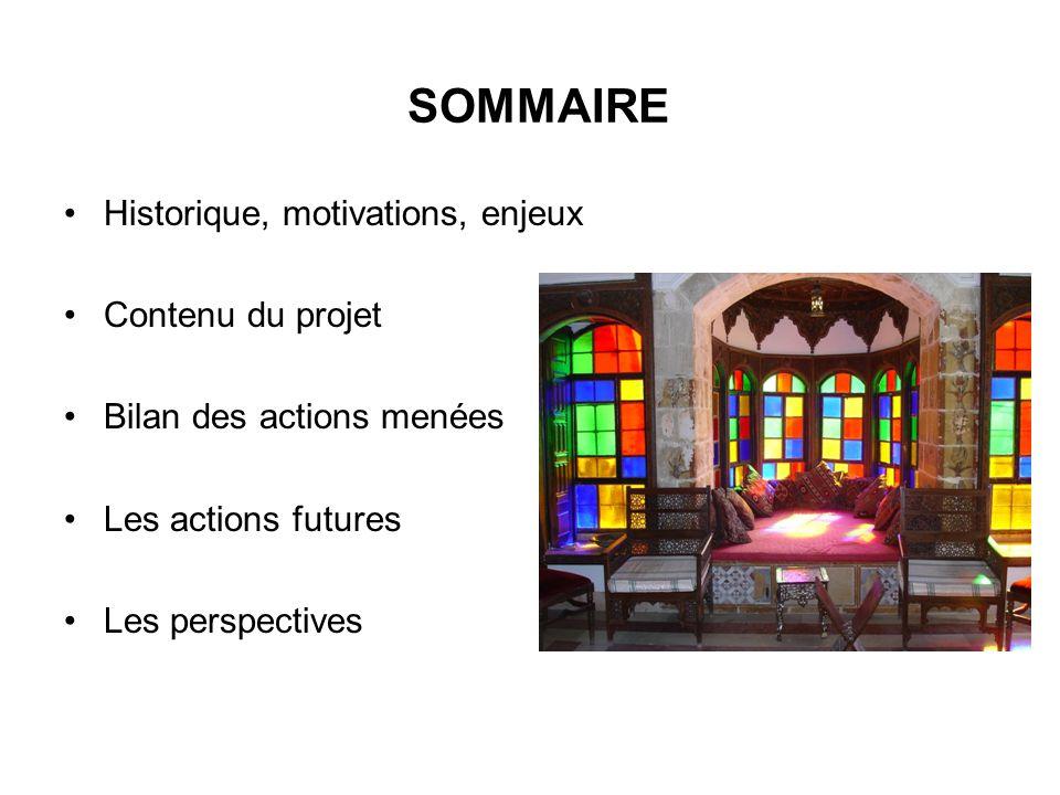 SOMMAIRE Historique, motivations, enjeux Contenu du projet Bilan des actions menées Les actions futures Les perspectives