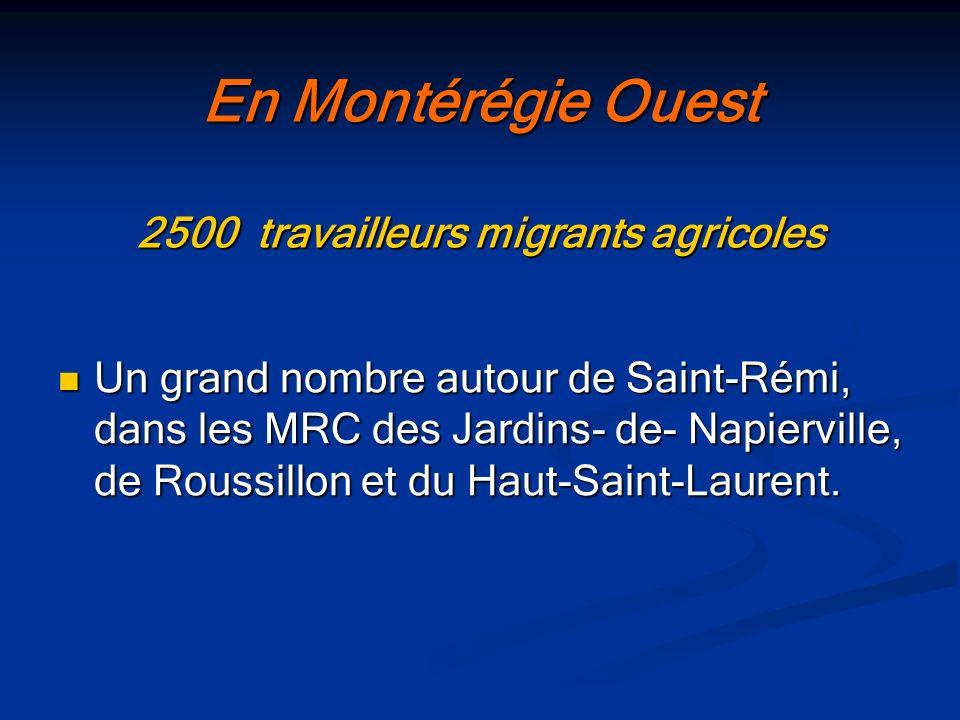 Une tendance mondiale travailleurs migrants agricoles États-Unis : 1 500 000 États-Unis : 1 500 000 France en 2002 : France en 2002 : 13 232 Canada en 2006 : 28 000 Canada en 2006 : 28 000 Ontario : 18 000 Ontario : 18 000 Québec : 7 000 Québec : 7 000