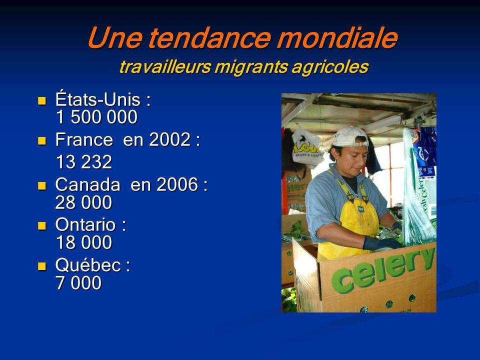 Une tendance mondiale travailleurs migrants agricoles États-Unis : 1 500 000 États-Unis : 1 500 000 France en 2002 : France en 2002 : 13 232 Canada en