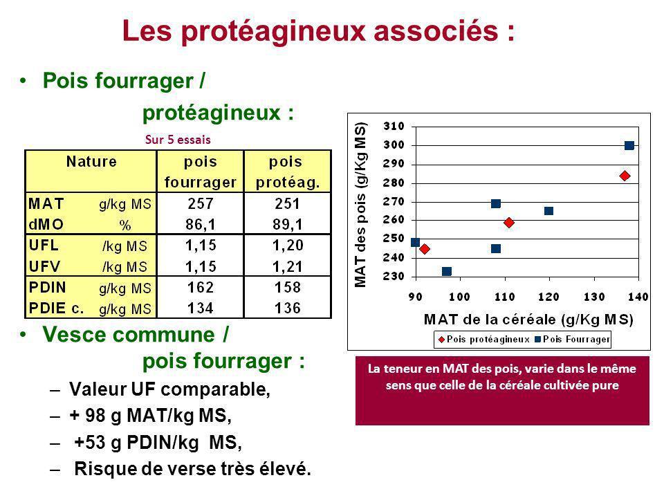 Les protéagineux associés : Pois fourrager / protéagineux : Vesce commune / pois fourrager : –Valeur UF comparable, –+ 98 g MAT/kg MS, – +53 g PDIN/kg
