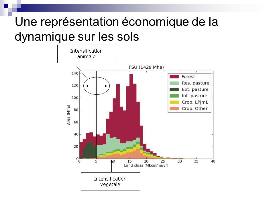 Une représentation économique de la dynamique sur les sols Intensification animale Intensification végétale