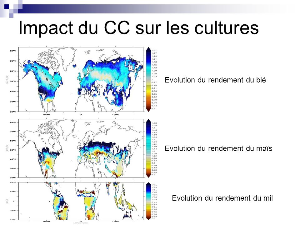 Impact du CC sur les cultures Evolution du rendement du blé Evolution du rendement du maïs Evolution du rendement du mil