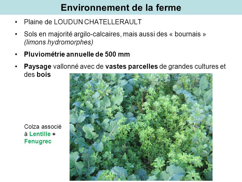 Environnement de la ferme Plaine de LOUDUN CHATELLERAULT Sols en majorité argilo-calcaires, mais aussi des « bournais » (limons hydromorphes) Pluviomé