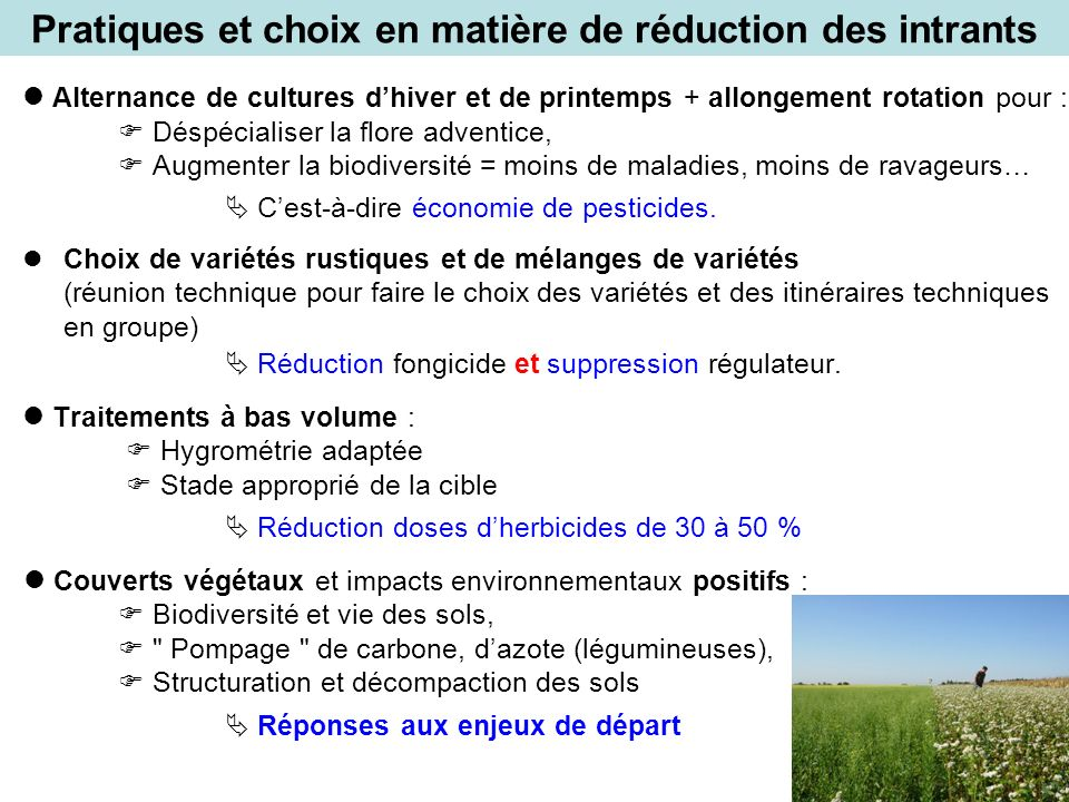 Pratiques et choix en matière de réduction des intrants Alternance de cultures dhiver et de printemps + allongement rotation pour : Déspécialiser la f